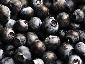 american acai berries