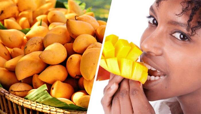 diet and african mango
