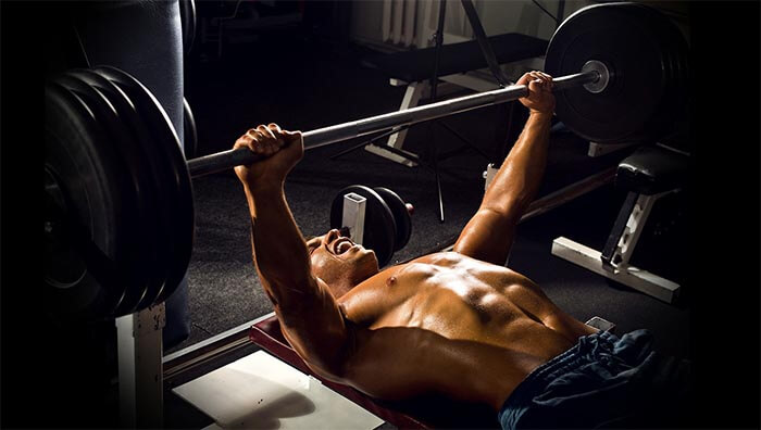 Chest bench press