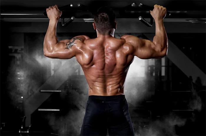 back traning