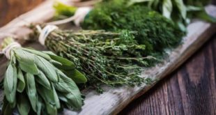 Herbs in health and beauty care